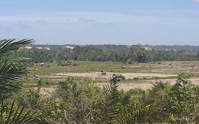 Buah Pahit Batubara di Desa Penyangga